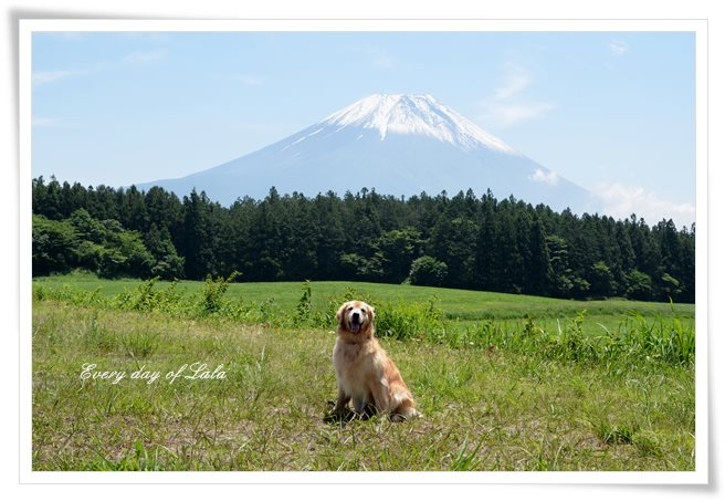 富士山を背景に記念写真ララ