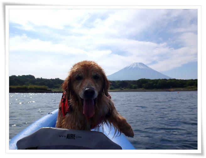 水遊び楽しいよ