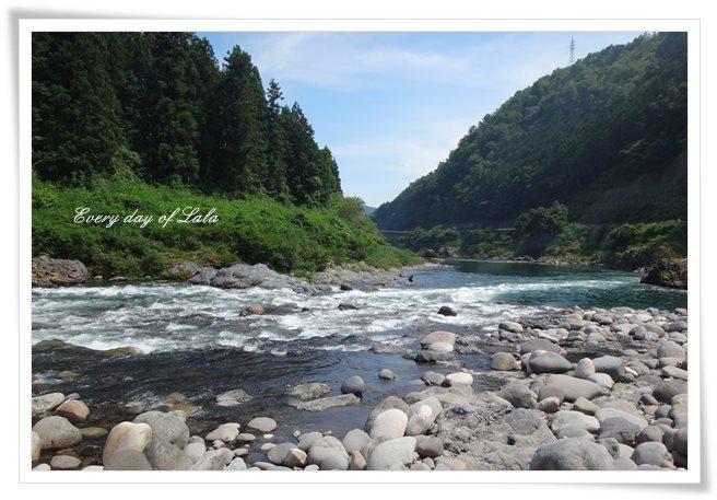 長良川です