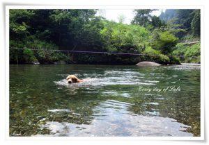 避暑地の川遊びへ