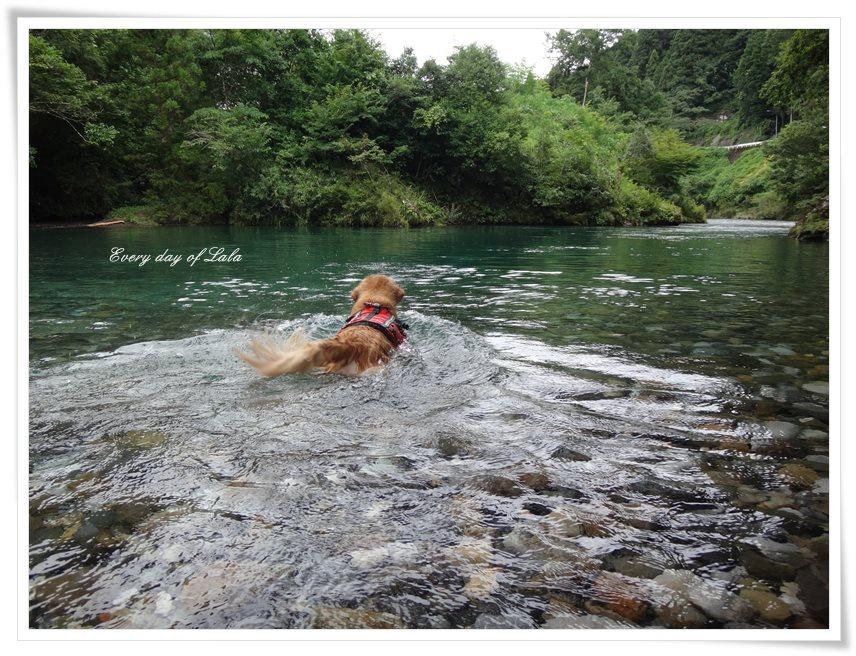 川へ行きました!