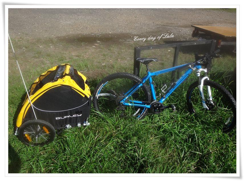 自転車と連結