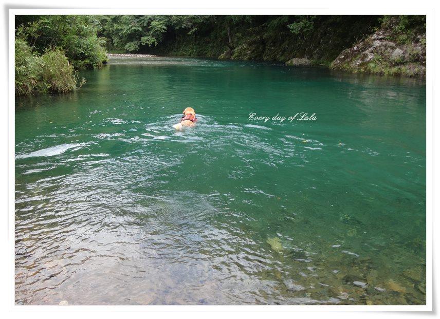 透明度のある川で川遊びを楽しむ