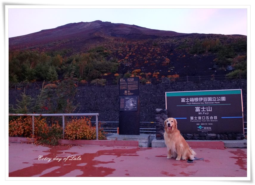 富士山で記念撮影