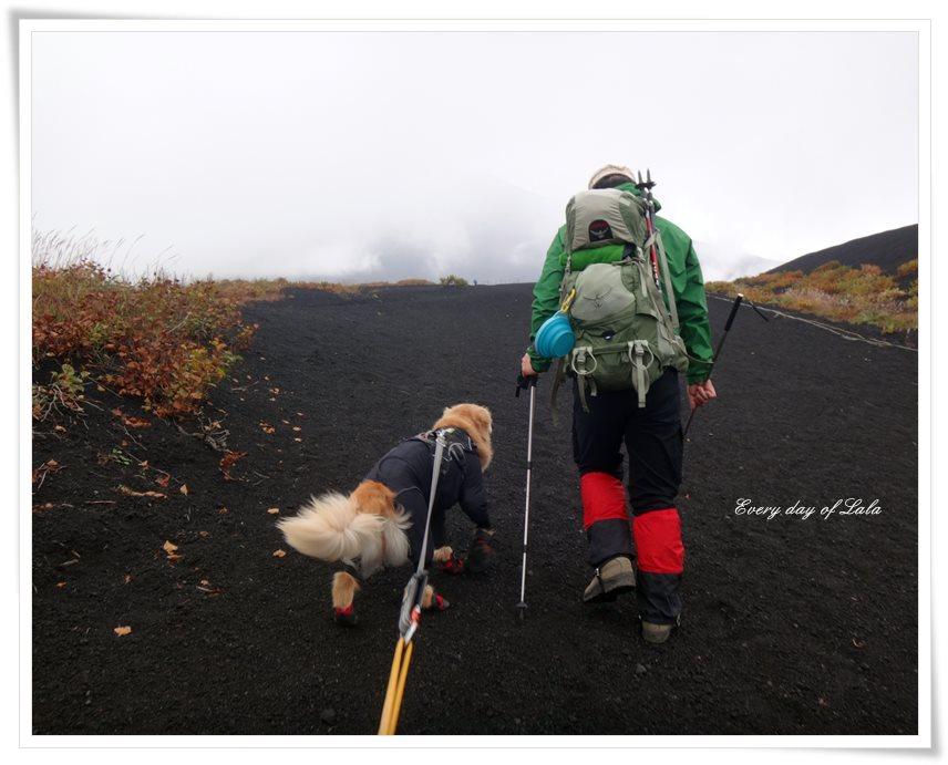 登山へ出発