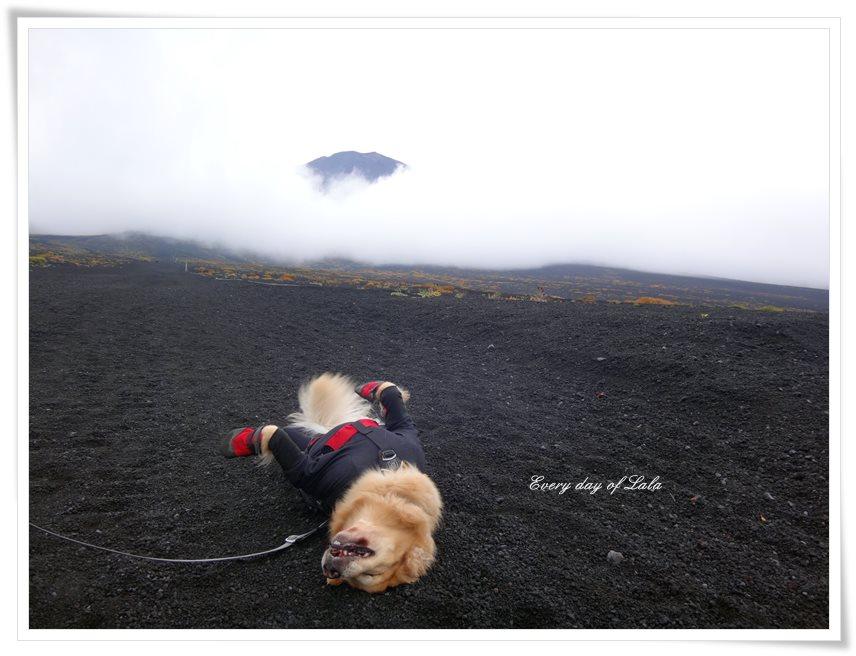 記念撮影登山2