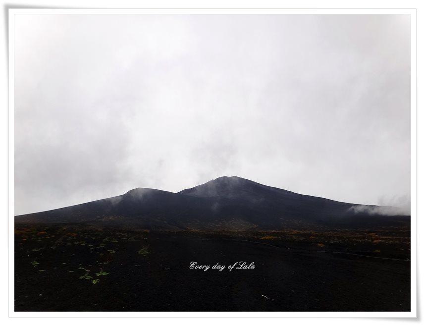 富士山を見上げる