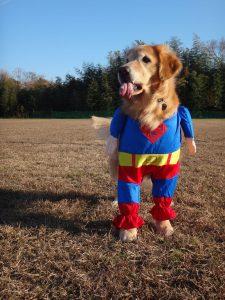 なんちゃってスーパーマン