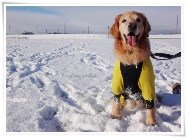雪遊びできました!
