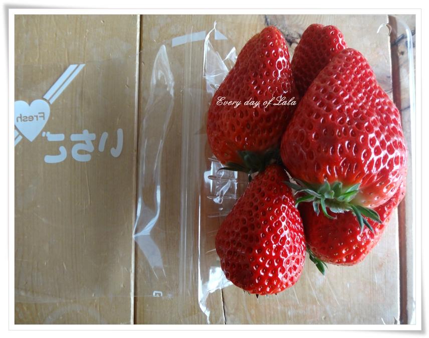 苺パック350円