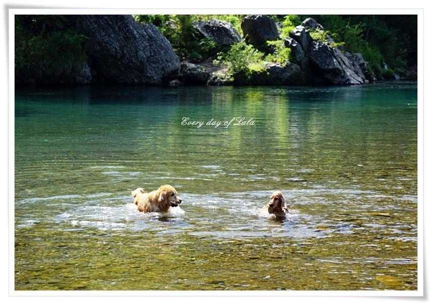 川遊び好き同士で♪