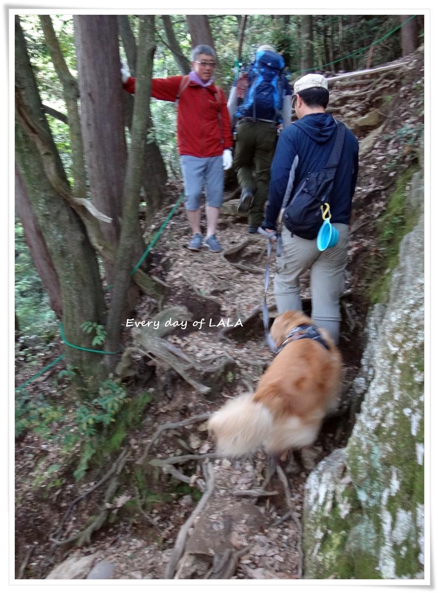 登山のはじまり