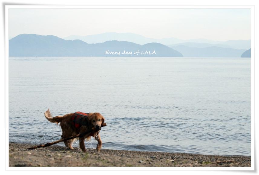 琵琶湖へ2