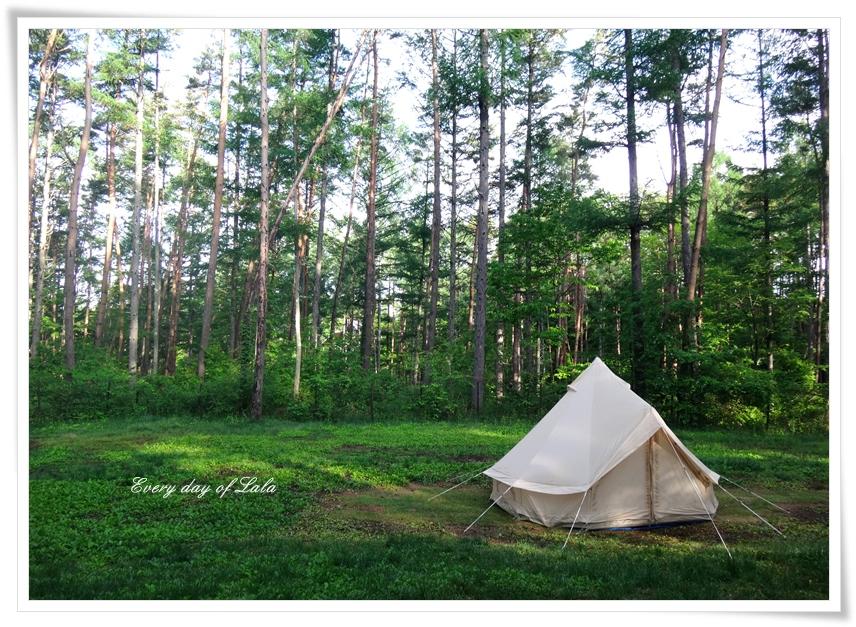 キャンプへ行こう!