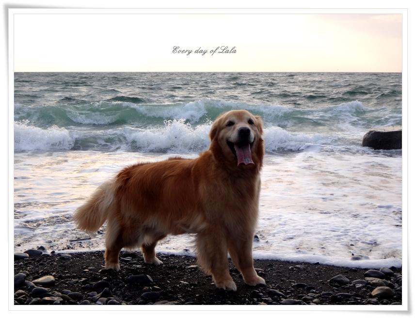 海の前で記念撮影