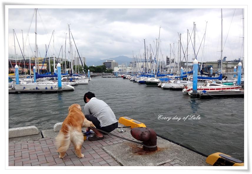 釣れてますか~?