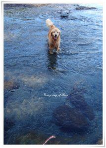 粕川の川遊びへ