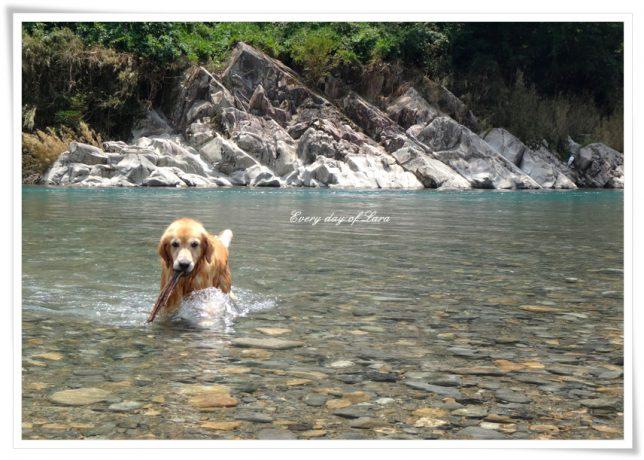 キレイな川で遊ぶ