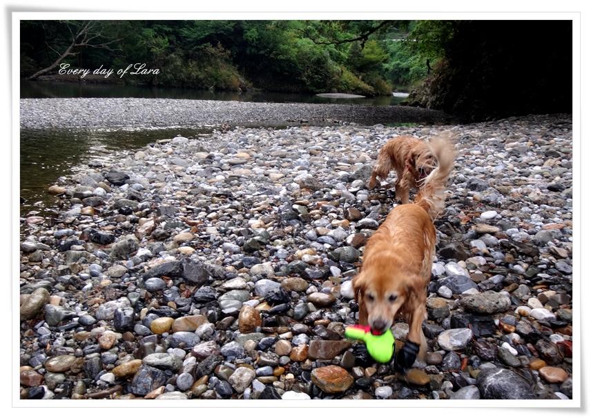 なぎちゃんと川遊びです