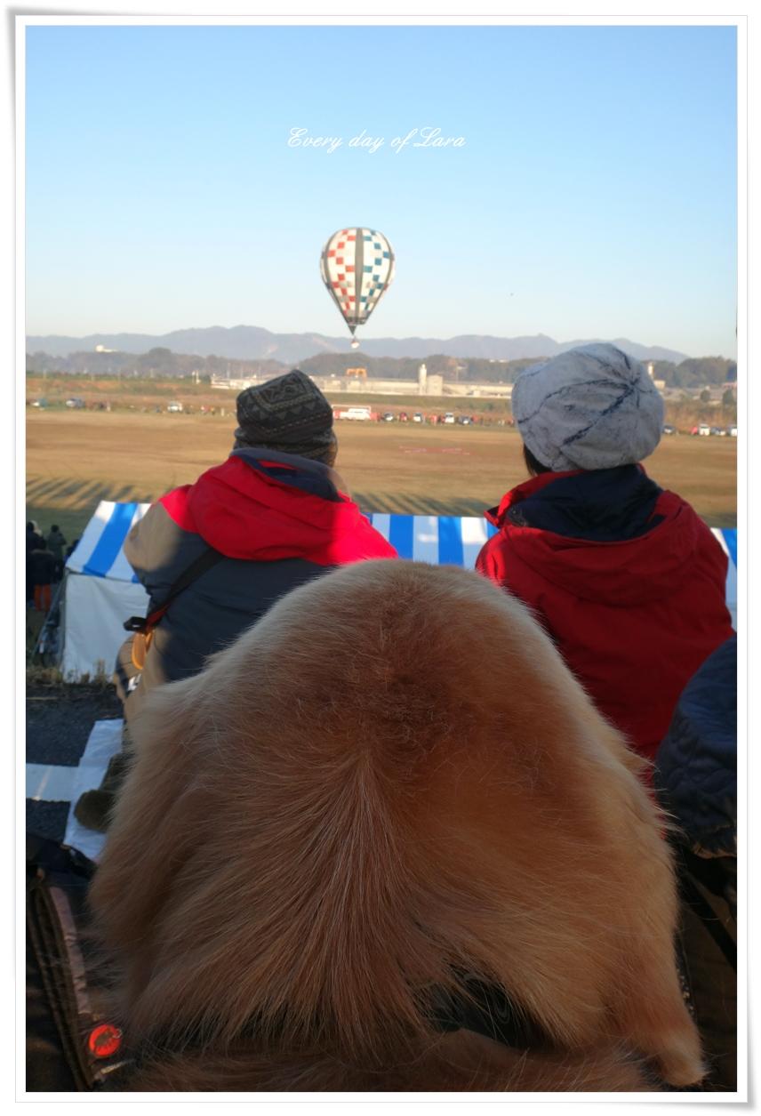 ララも熱気球観戦