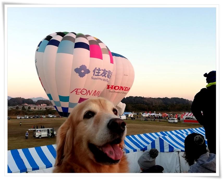 ララと熱気球を見に行く