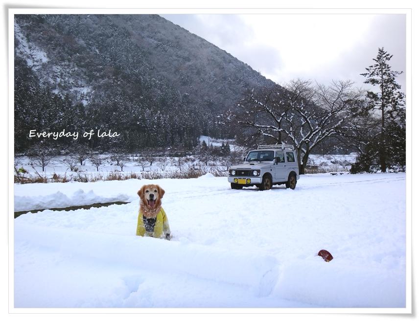 たっぷり積雪して雪遊びできます