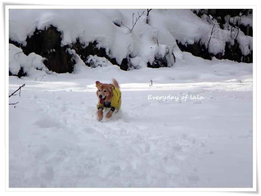雪遊び楽しい♪