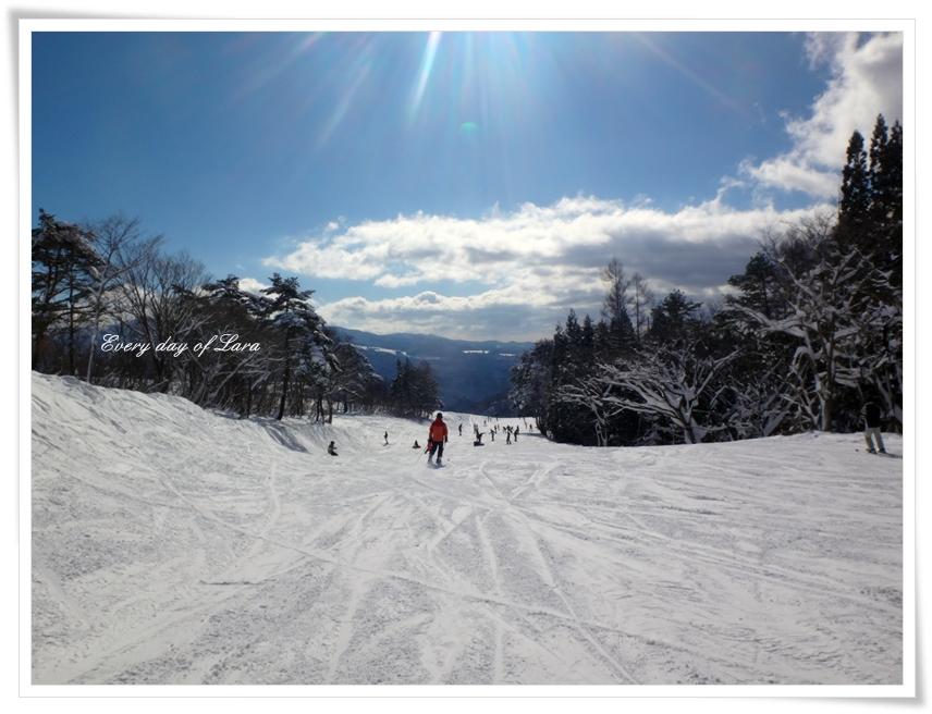スキーへやってきました