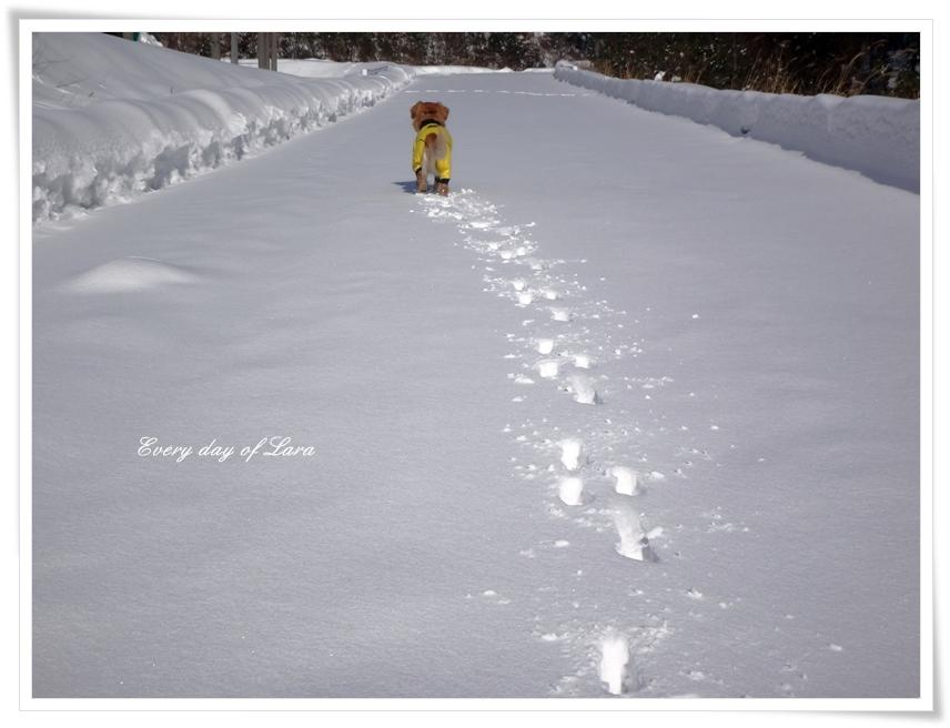 いざ、雪遊びへ行くよー