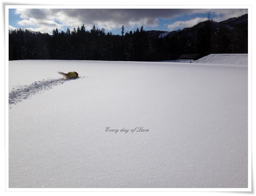 雪遊びでのんびりと
