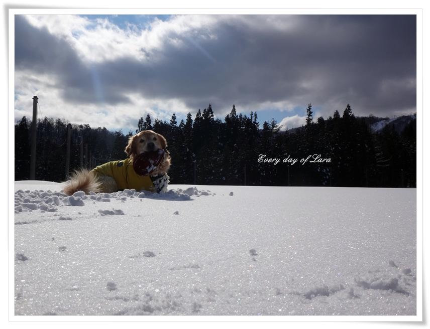 楽しい雪遊びです
