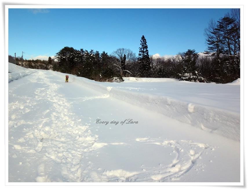 雪遊び帰りたくない