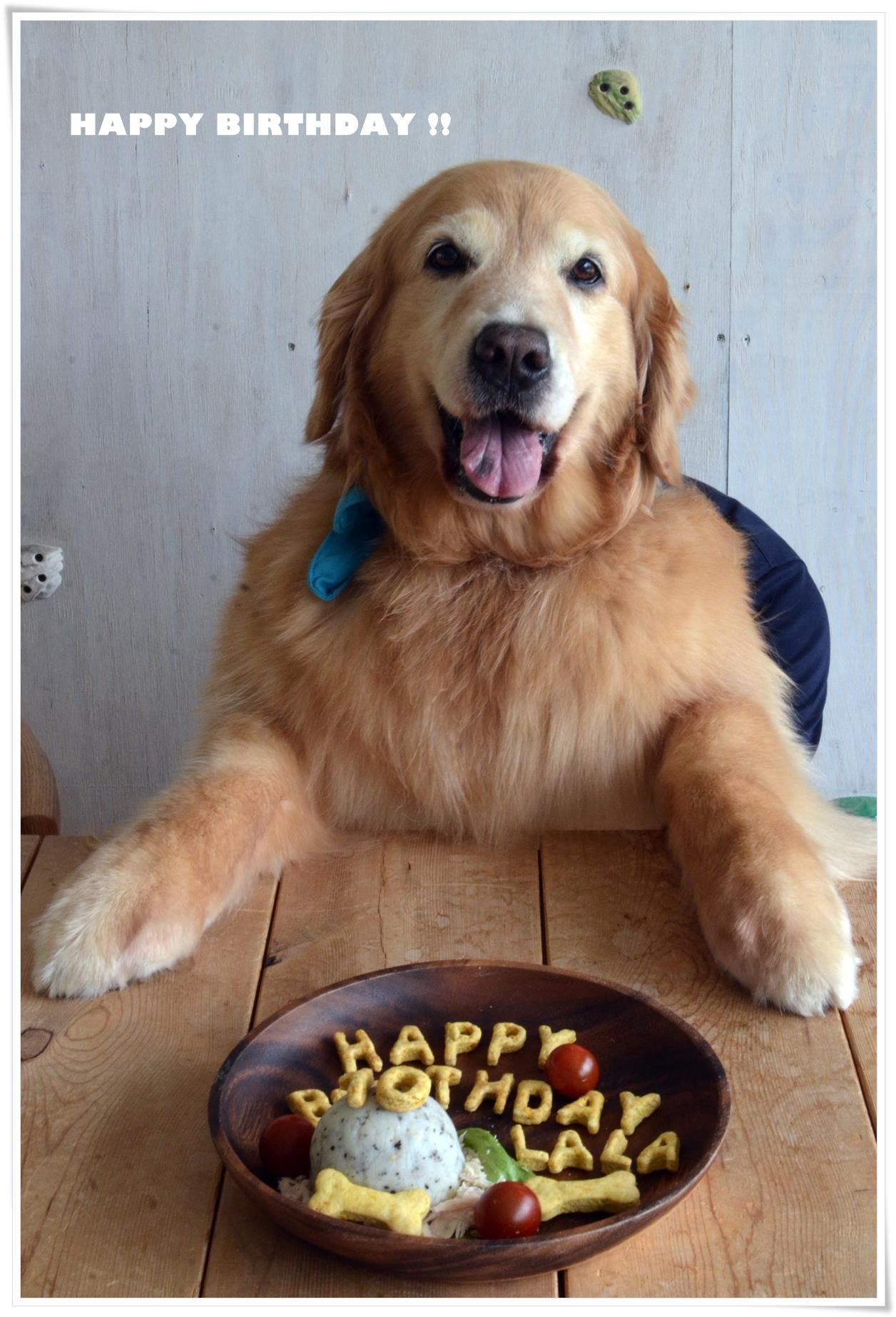 ララと10歳ケーキで写真
