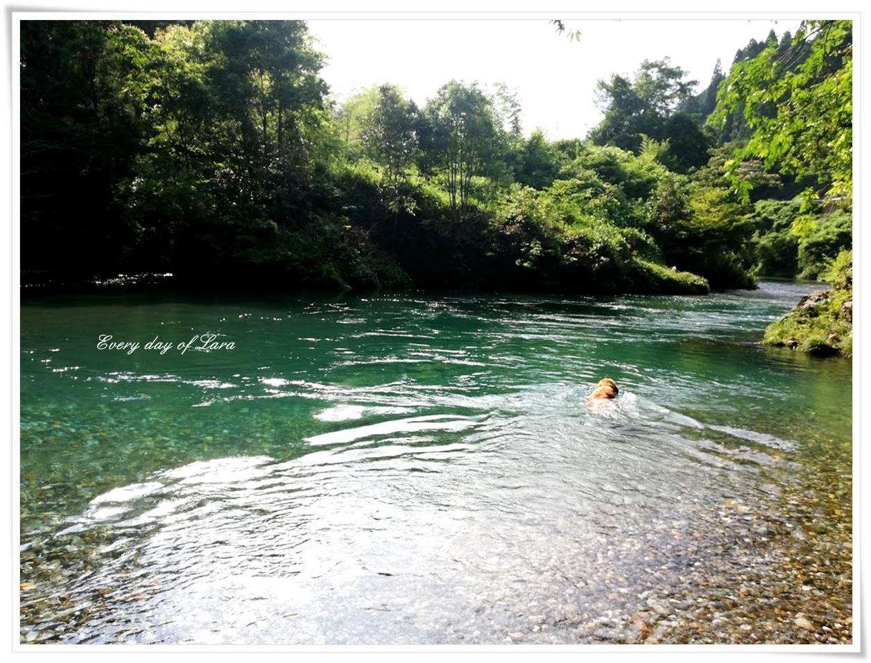 いつもの川遊びはじまり