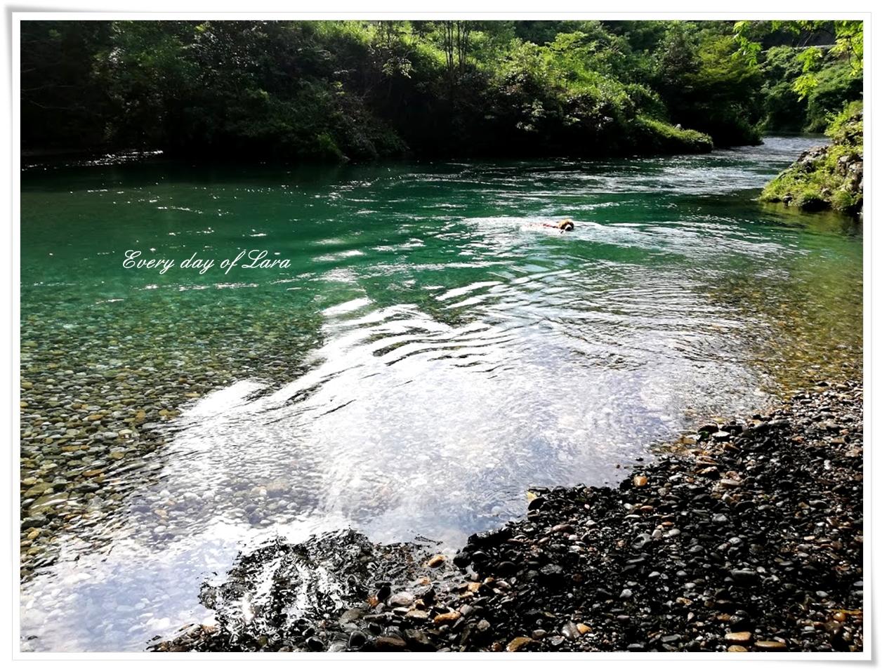 キレイなむぎ川