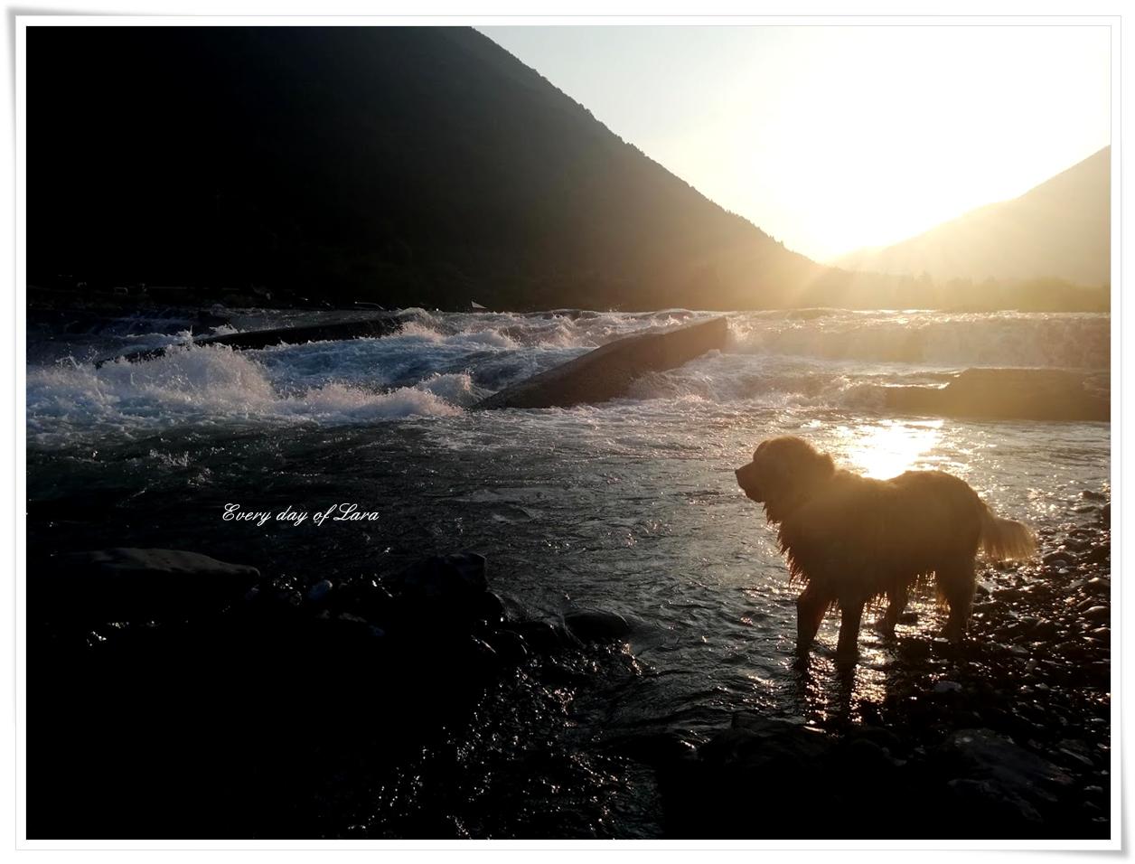 粕川の夕日を眺める