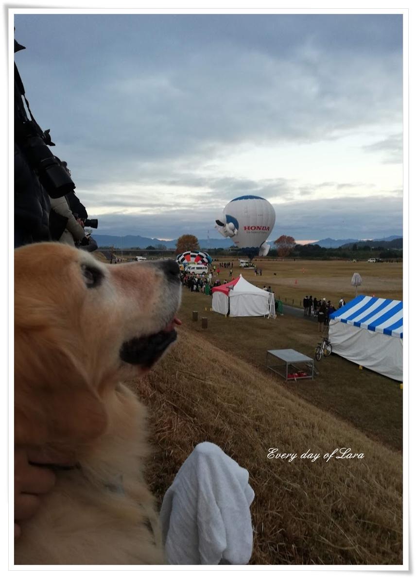 ララも熱気球を眺める