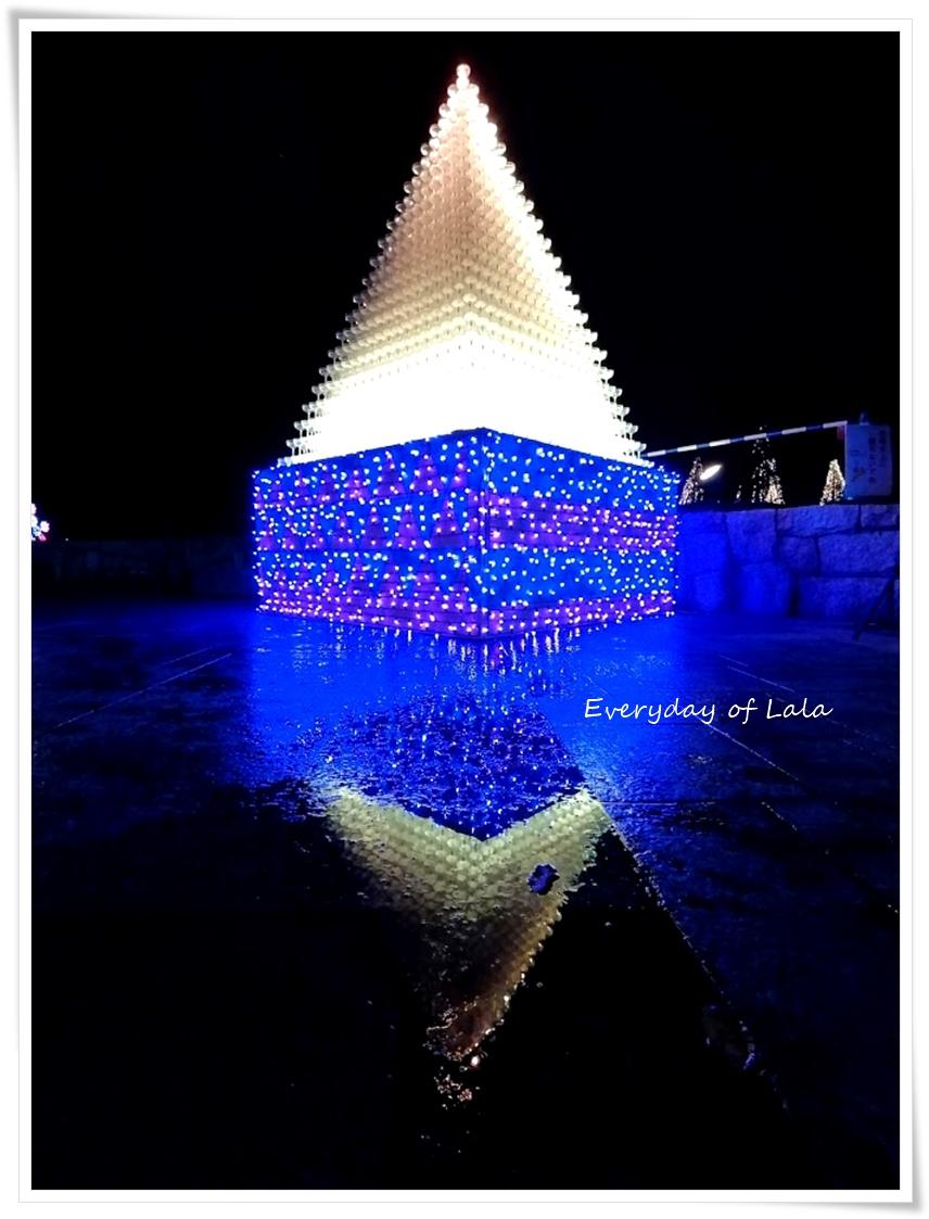 ピラミッドグラスのイルミネーション