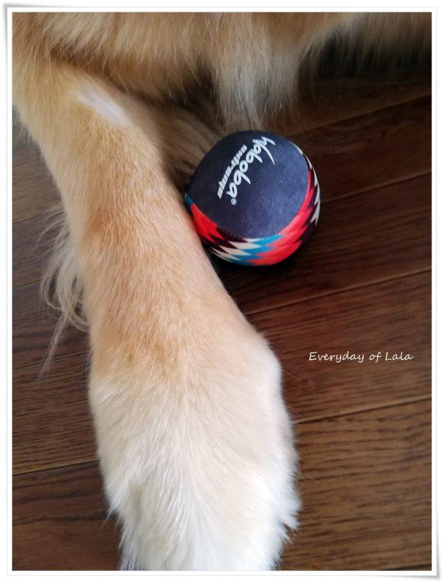 いただいたボール
