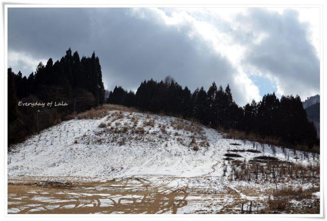 揖斐高原へ行ってみたら雪がない