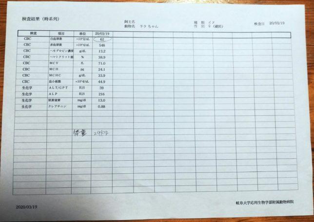 0319の血液検査