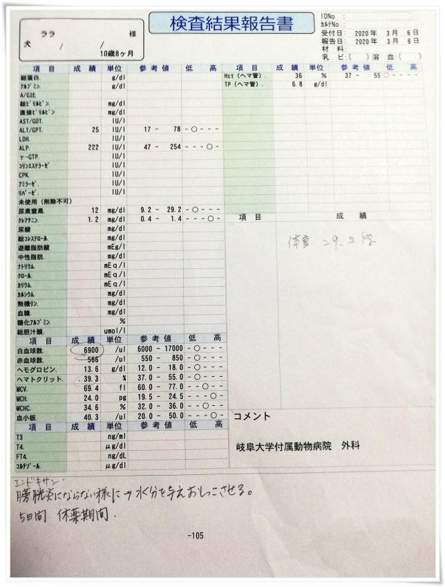 血液検査結果0306