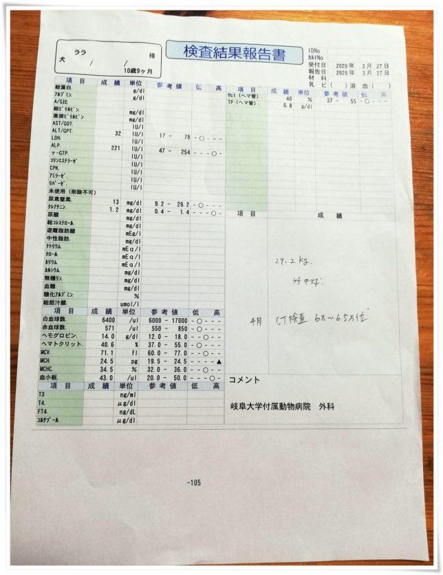 0327血液検査結果