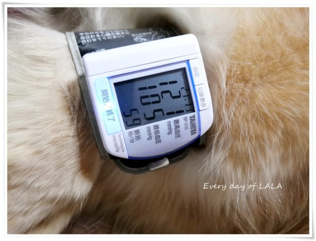 0521血圧