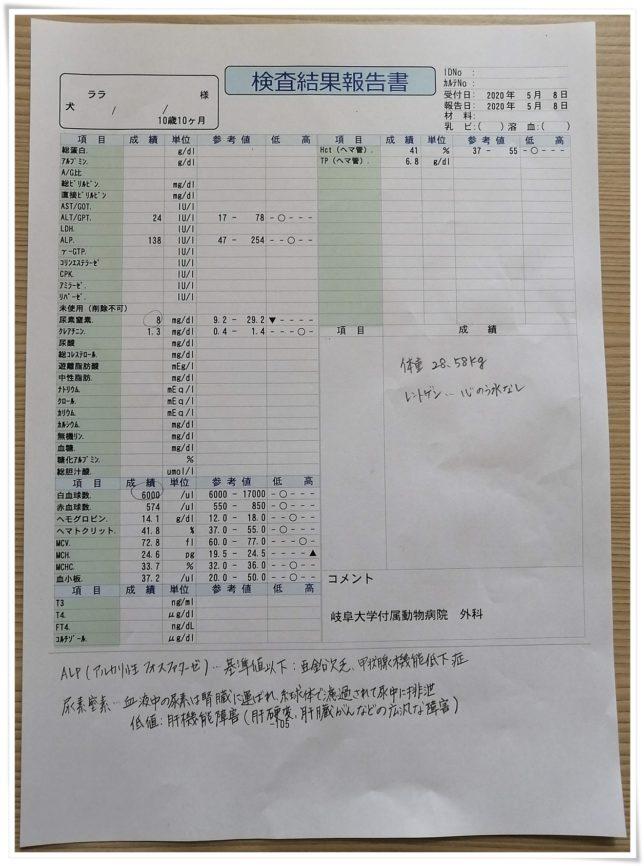 血液検査0508