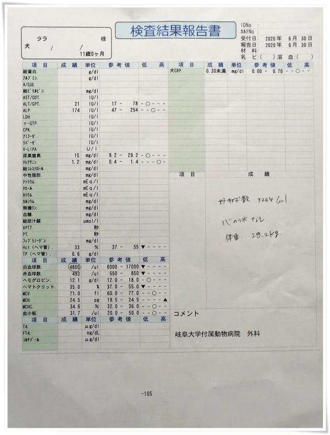 20200630_血液検査結果