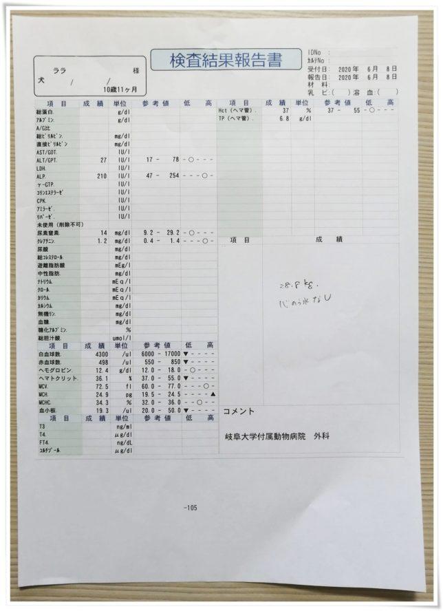 0608血液検査