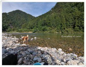 板取川へ行きました。