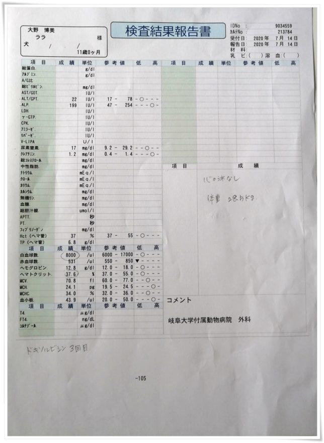 20200714血液検査