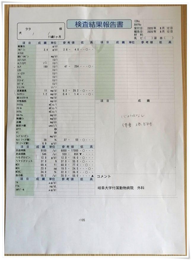 20200812血液検査1